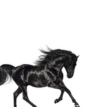 old town road (single) - lil nas x