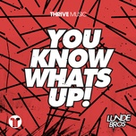 you know what's up (single) - lunde bros