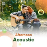 afternoon acoustic - v.a