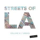 streets of la volume 6 - urban - aura5