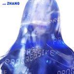 past progressive - truong luong dinh (jane zhang)