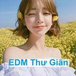 edm thu gian (phan 3) - v.a