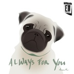 always for you (single) - episode on
