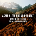asmr sleep sounds - calm binaural noises - asmr sleep sound project