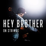 hey brother (single) - the modern string quintet