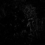 Nghe và tải nhạc Paint It Black (Single) Mp3 về điện thoại