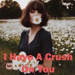 i have a crush on you - v.a