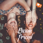 busom friend - v.a