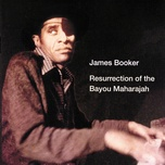 resurrection of the bayou maharajah (live at the maple leaf bar, new orleans, la / 1977-1982) - james booker