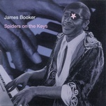 spiders on the keys (live at the maple leaf bar, new orleans, la / 1977-1982) - james booker