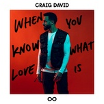 when you know what love is (single) - craig david