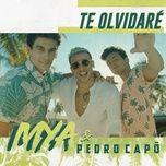 te olvidare (single) - mya, pedro capo