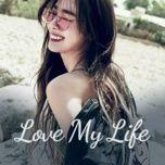 love my life - v.a