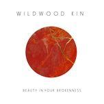 beauty in your brokenness (single) - wildwood kin