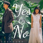 yes or no - v.a