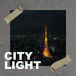 city light - v.a