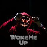 wake me up - v.a