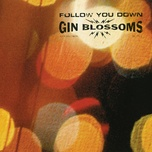 follow you down (ep) - gin blossoms