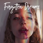 forgotten dreams - v.a