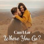 can i go where you go? - v.a