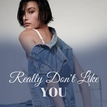 really don't like you - v.a