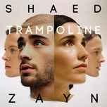 trampoline (single) - shaed, zayn