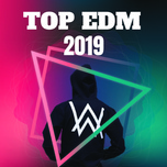 top edm 2019 - v.a