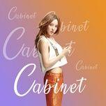 cabinet - v.a