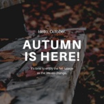 autumn is here! - v.a