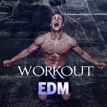 workout edm - v.a