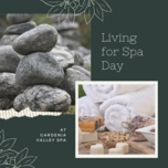 living for spa day - v.a