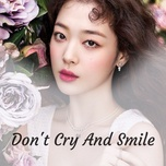 don't cry and smile - v.a