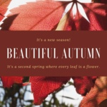beautiful autumn - v.a