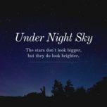 under night sky - v.a