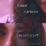 princess doesn't cry - v.a
