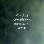 you are somebody's reason to smile - v.a