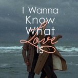 i wanna know what love is - v.a