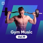 gym music (vol. 19) - v.a