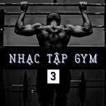nhac tap gym (vol. 3) - v.a
