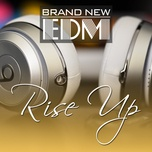 brand new edm - rise up - v.a