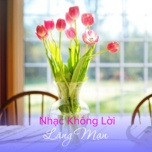 nhac khong loi lang man - v.a