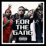 for the gang - v.a