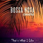 that's what i like (single) - bossa nova covers, mats & my