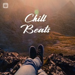 chill beats - v.a