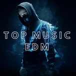 top music edm - v.a