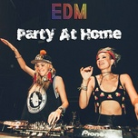 party at home - edm - v.a
