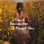 don't remember, i forgot you - v.a