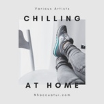 chilling at home - acoustic viet - v.a