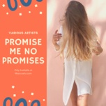 promise me no promises - v.a