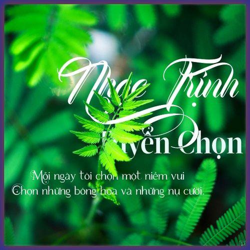 Nhạc Trịnh Tuyển Chọn